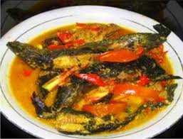 Membuat Ikan Lele Santan Pedas Gurih dan Nikmat